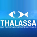 Thalassa - L'emission du vendredi 21 septembre 2012