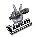 The Voice 2 : la plus belle voix