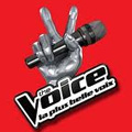 The Voice : la plus belle voix